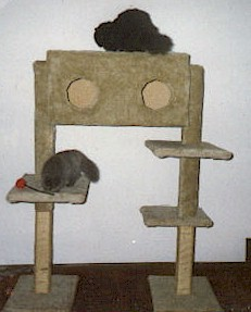 Cats on tree house
